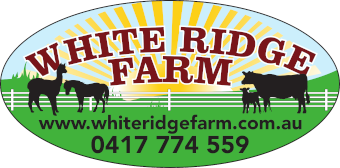 White Ridge Farm