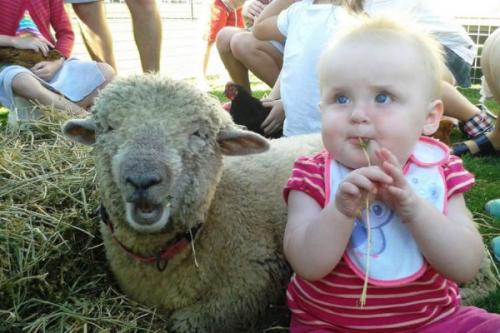 Baby with Sheep